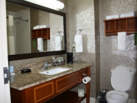 hampton-inn-pell-city-al-020